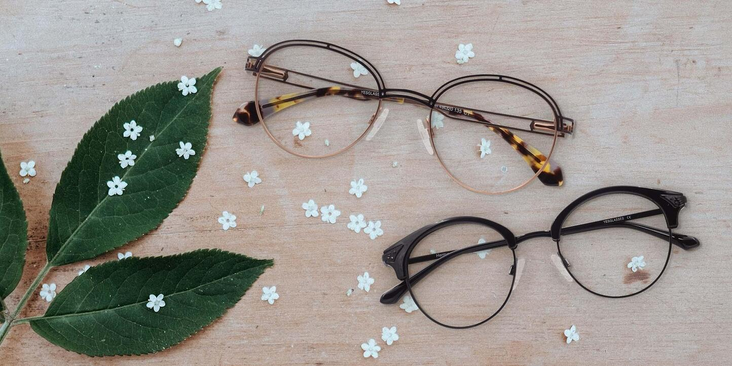 Browline Glasses Collection